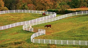 A small horse farm with fencing & green pastures